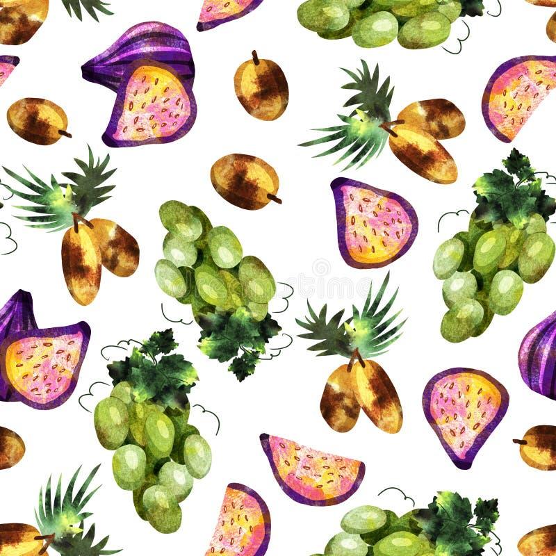 modello della frutta tropicale royalty illustrazione gratis