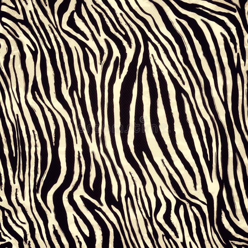 Modello della pelle della zebra fotografia stock libera da diritti