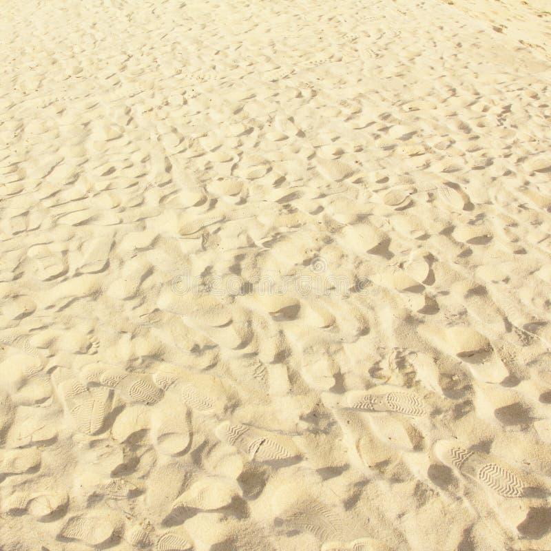 Modello della sabbia di una spiaggia fotografia stock