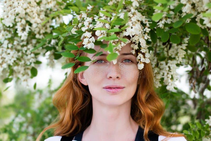 Modello della testarossa fra l'acacia dei fiori immagine stock