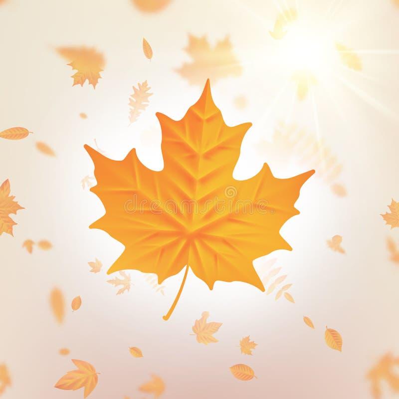 Modello delle foglie cadenti di autunno per i cartelli, insegne, alette di filatoio, presentazioni, rapporti Caduta del fogliame  royalty illustrazione gratis