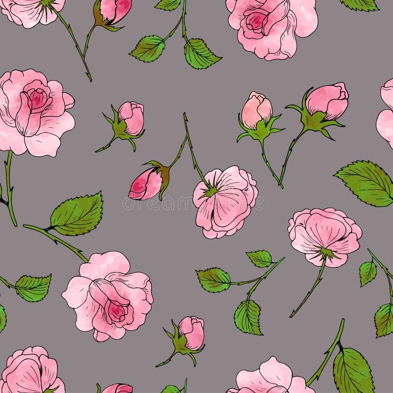 Modello delle rose, dei germogli e delle foglie su un fondo grigio Vettore illustrazione vettoriale