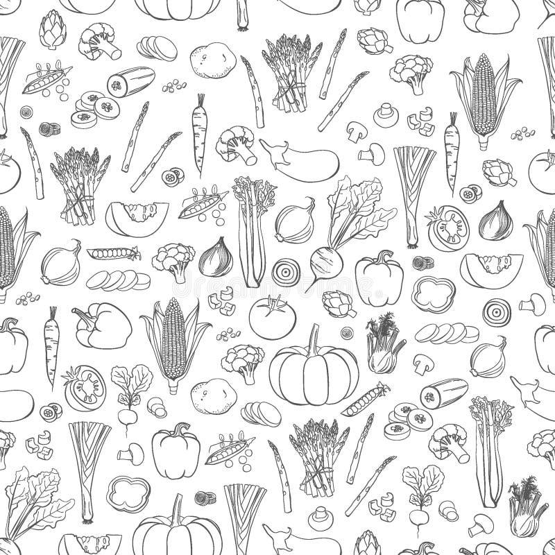 Modello delle verdure di vettore Fondo senza cuciture delle verdure fotografia stock