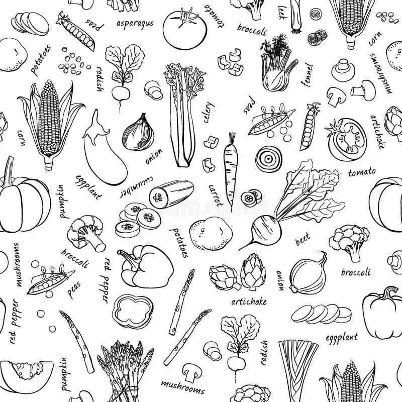 Modello delle verdure di vettore Fondo senza cuciture delle verdure immagini stock libere da diritti