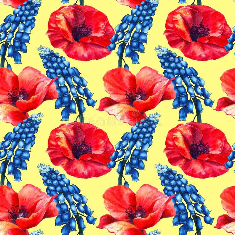Modello di erbe senza cuciture con i fiori blu del campo dell'acquerello del muscari e dei papaveri su fondo strutturato di carta royalty illustrazione gratis