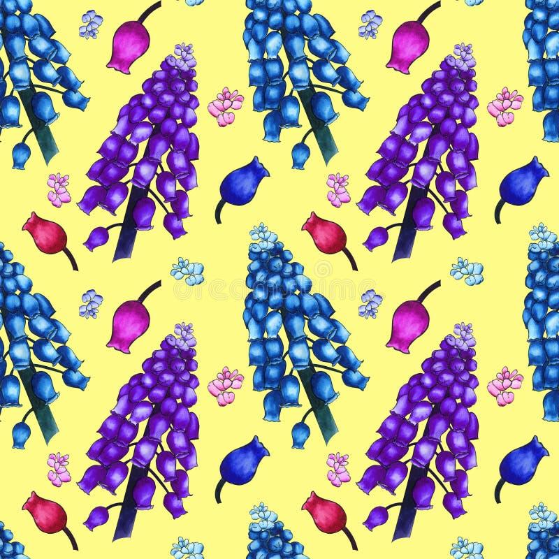 Modello di erbe senza cuciture con i fiori variopinti del campo dell'acquerello del muscari su fondo giallo Ornamento di grande royalty illustrazione gratis