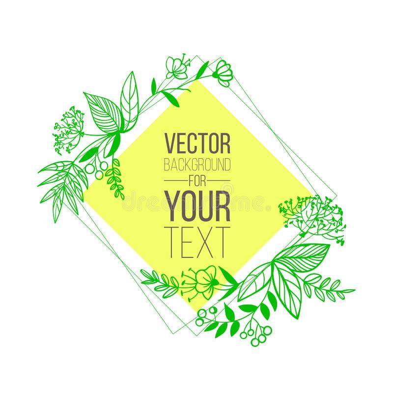 Modello di estate e della primavera con il fiore e le foglie di verde di scarabocchio Carta editabile universale creativa nello s illustrazione vettoriale