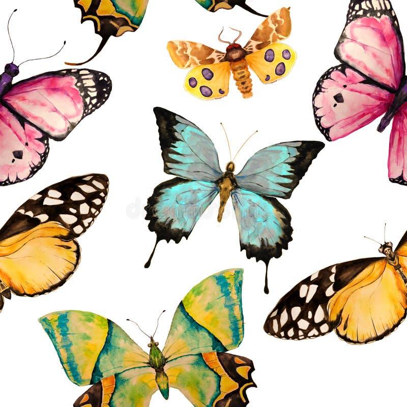 Modello di farfalla senza cuciture illustrazione di stock