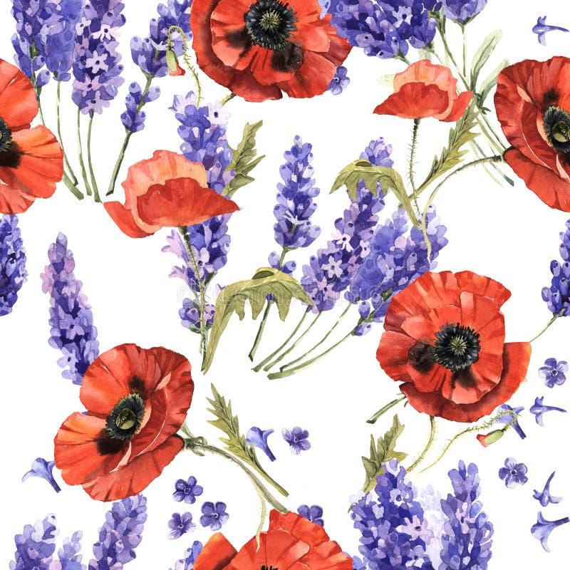 Modello di fiore della lavanda e del papavero del Wildflower in uno stile dell'acquerello isolato illustrazione di stock