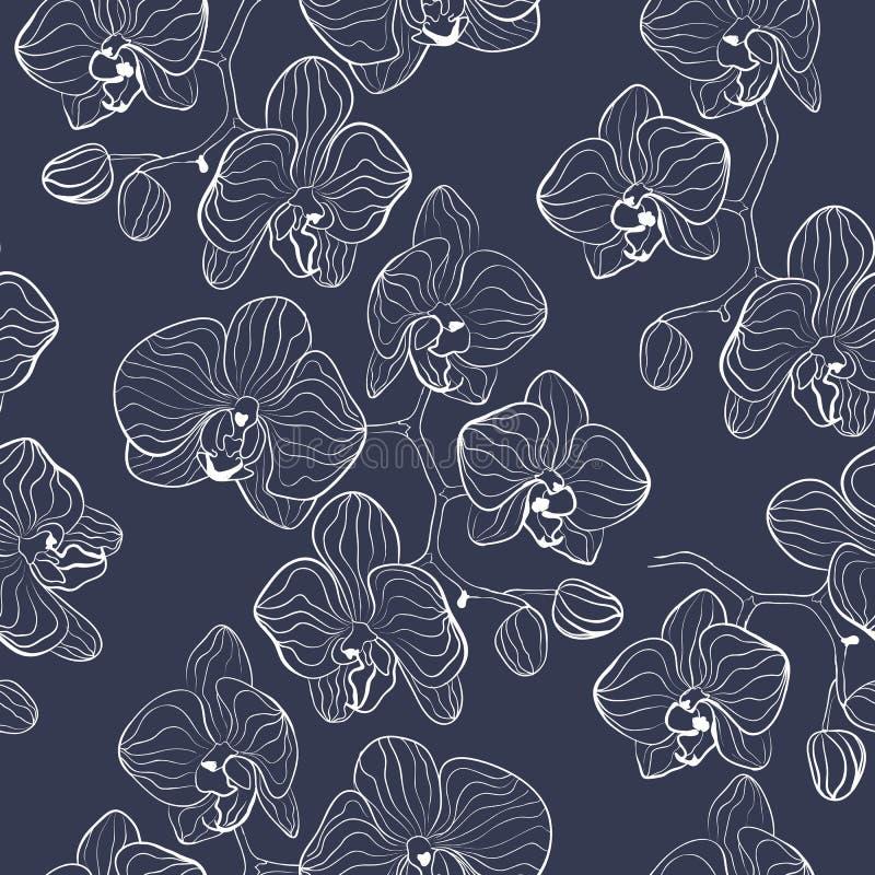 Modello di fiore senza cuciture con il fondo di phalaenopsis delle orchidee illustrazione vettoriale