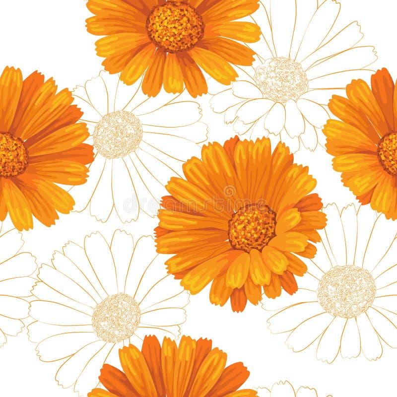 Modello di fiori della calendula royalty illustrazione gratis