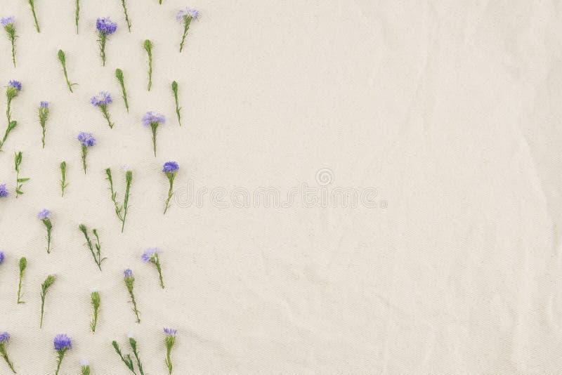 Modello di fiori porpora della taglierina immagini stock libere da diritti