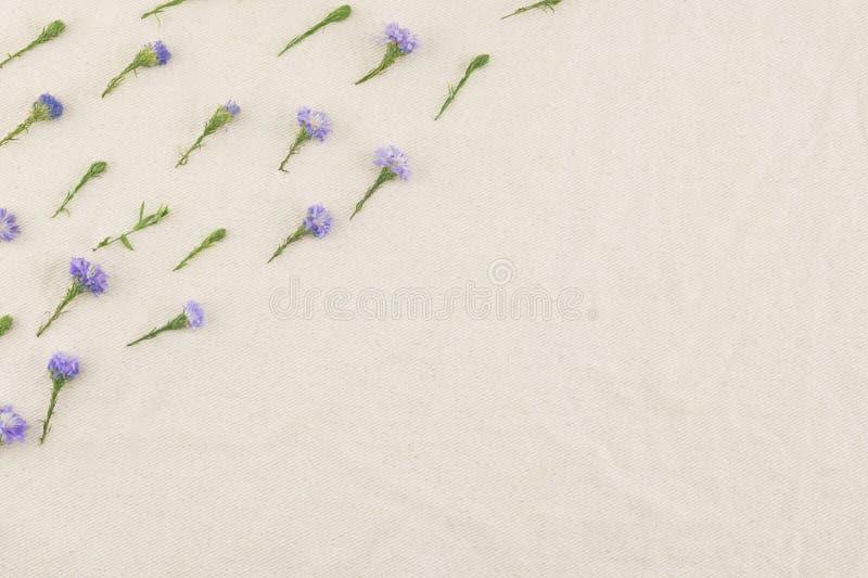Modello di fiori porpora della taglierina fotografie stock