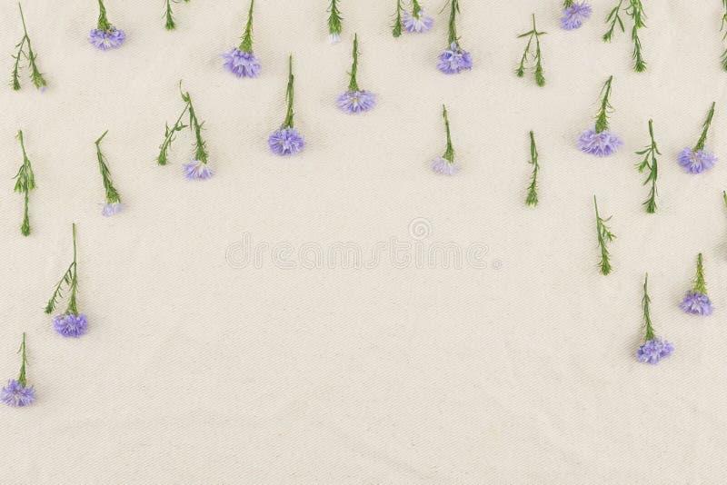 Modello di fiori porpora della taglierina sul tessuto bianco della mussola immagini stock