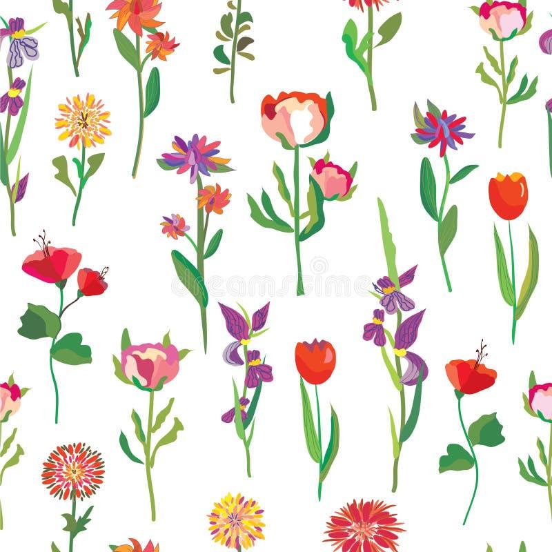 Modello di fiori senza cuciture per il giardino illustrazione di stock