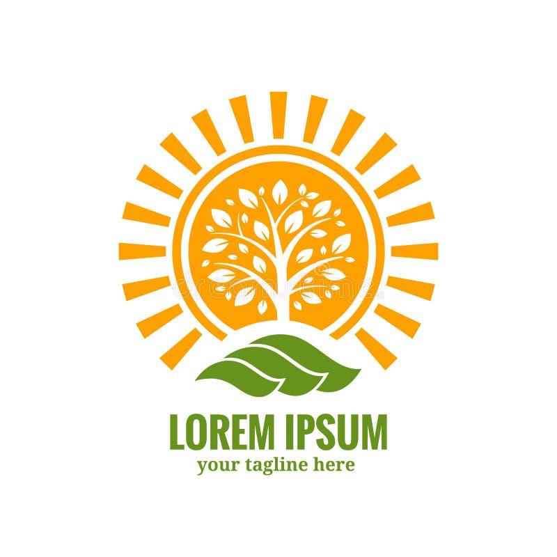 Modello di logo dell'albero di Sun illustrazione di stock