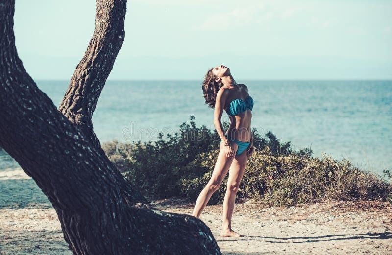 Modello di moda in costume da bagno che sanbathing in mare vicino all'albero estate della donna la donna felice si rilassa in mar immagine stock libera da diritti