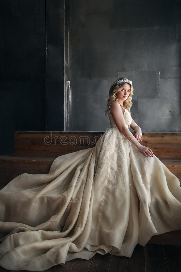 Modello di moda in vestito lungo con la corona sui precedenti del metallo immagine stock libera da diritti