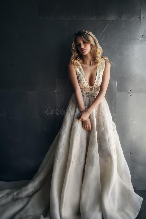 Modello di moda in vestito lungo sui precedenti del metallo fotografie stock libere da diritti