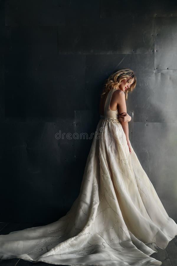Modello di moda in vestito lungo sui precedenti del metallo fotografia stock libera da diritti