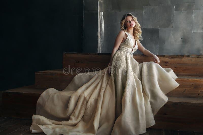 Modello di moda in vestito lungo sui precedenti del metallo fotografia stock