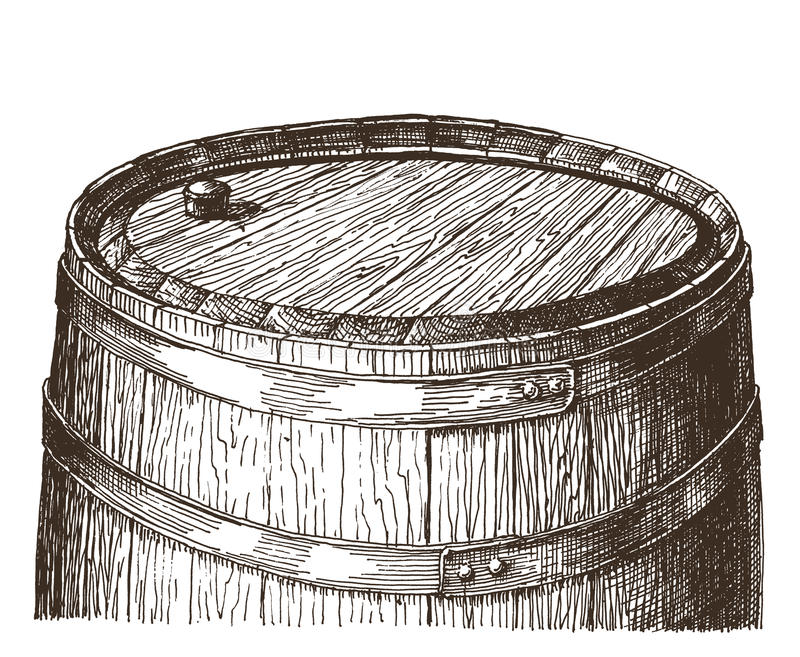 Modello di progettazione di logo di vettore del barilotto della quercia vino o illustrazione di stock