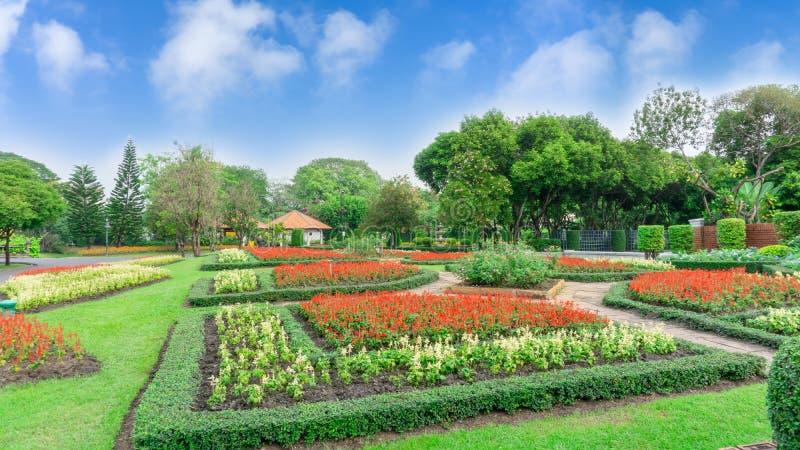 Modello di stile inglese del giardino convenzionale, giardini con forma geometrica del cespuglio ed arbusto, decorazione con la p immagine stock libera da diritti