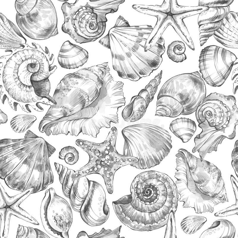 Modello dipinto a mano delle conchiglie Fondo d'annata dell'oceano dell'acquerello Illustrazione disegnata a mano originale Proge illustrazione vettoriale
