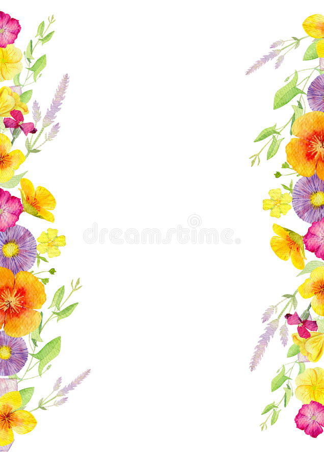 Modello dipinto a mano di clipart del modello dell'acquerello dei fiori selvaggi royalty illustrazione gratis