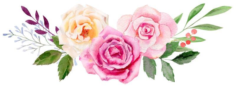 Modello dipinto a mano di clipart del modello dell'acquerello delle rose illustrazione vettoriale