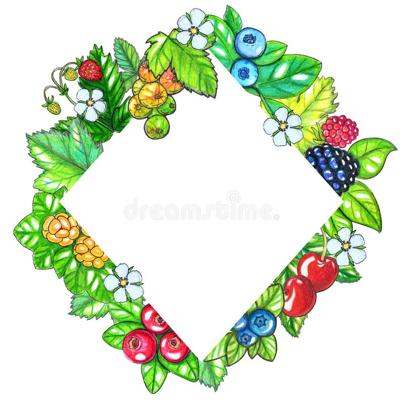 Modello dipinto a mano di watecolor con le bacche e le foglie isolate su fondo bianco royalty illustrazione gratis