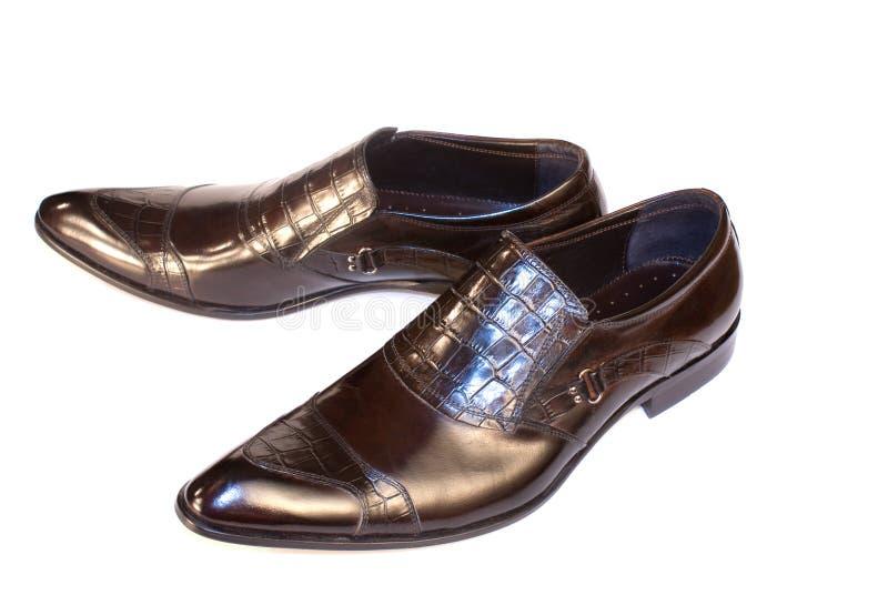 Modello elegante delle calzature dell'uomo fotografia stock libera da diritti