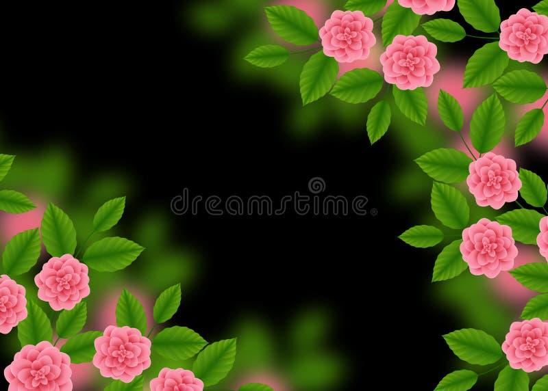 Modello floreale con delle rose rosa di fioritura sul fondo di Bokeh vago il nero Mazzo delle peonie e dei Wildflowers Illustrazi illustrazione di stock