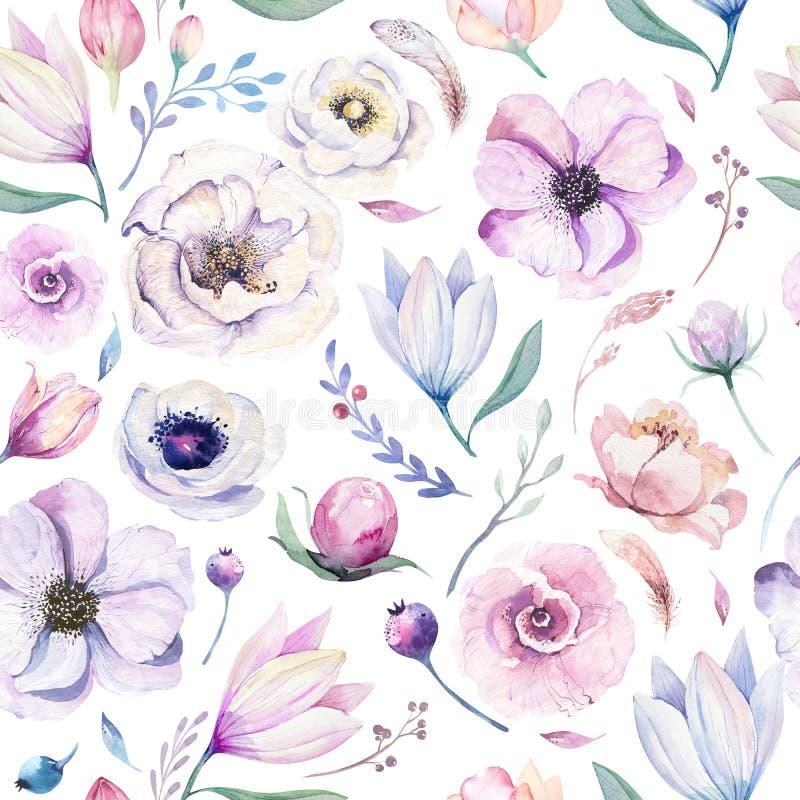Modello floreale dell'acquerello lilic senza cuciture della molla su un fondo bianco Fiori rosa e rosa, decorazione del weddind illustrazione vettoriale