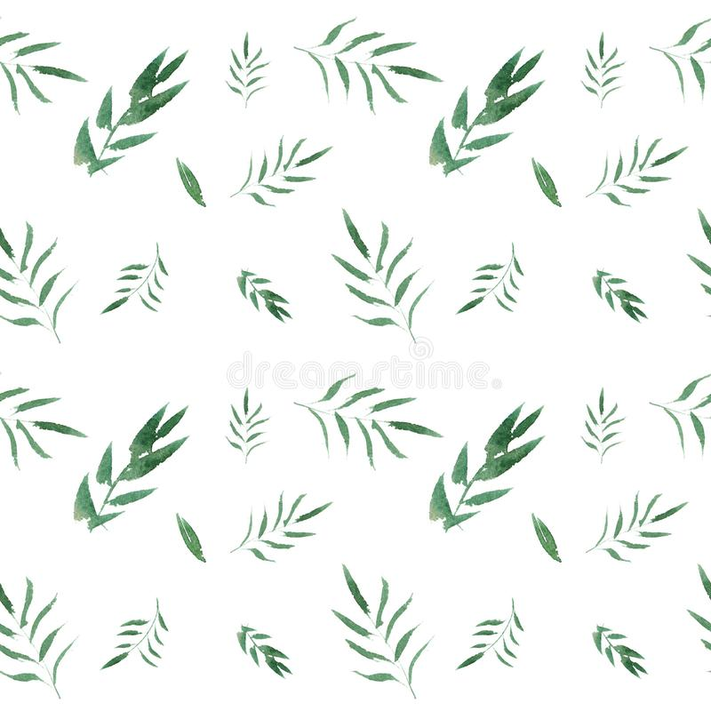 Modello floreale dell'acquerello senza cuciture con le foglie verdi illustrazione di stock