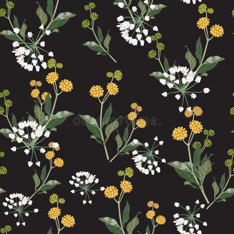 Modello floreale elegante senza cuciture dei wildflowers gialli e bianchi I motivi botanici sono sparsi a caso illustrazione vettoriale