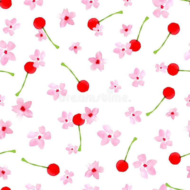 Modello floreale senza cuciture su un fondo bianco Ciliegia rosa, prugna, pera, fiore della mela Acquerello di estate e della pri fotografia stock libera da diritti