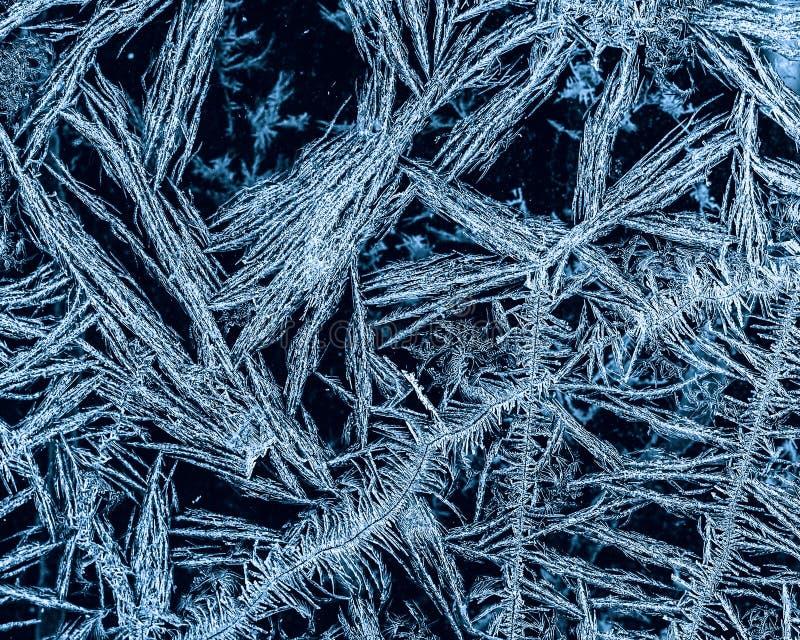 Modello gelido naturale su fondo scuro Primo piano fotografia stock