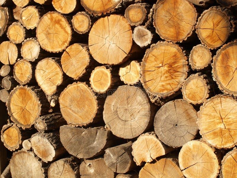 Modello giallo-marrone dai tronchi di albero impilati segati fotografie stock libere da diritti