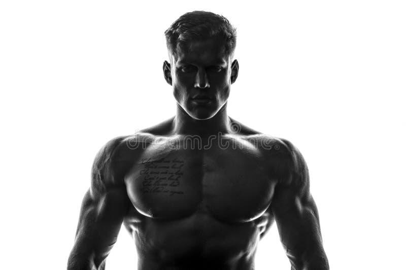 Modello maschio muscolare immagini stock