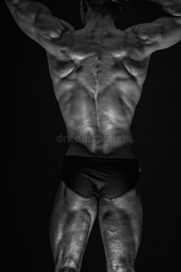 Modello maschio adatto fotografia stock