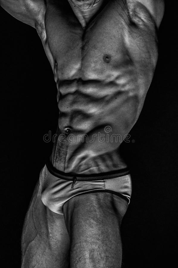 Modello maschio adatto immagini stock libere da diritti