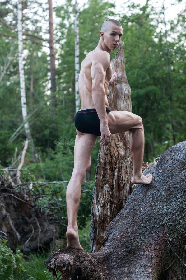 Modello maschio nella foresta immagine stock libera da diritti