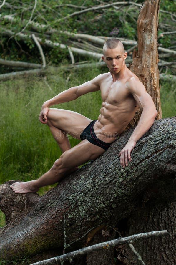Modello maschio nella foresta fotografie stock libere da diritti