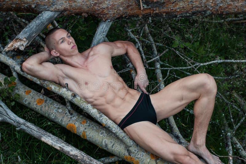 Modello maschio nella foresta immagini stock libere da diritti