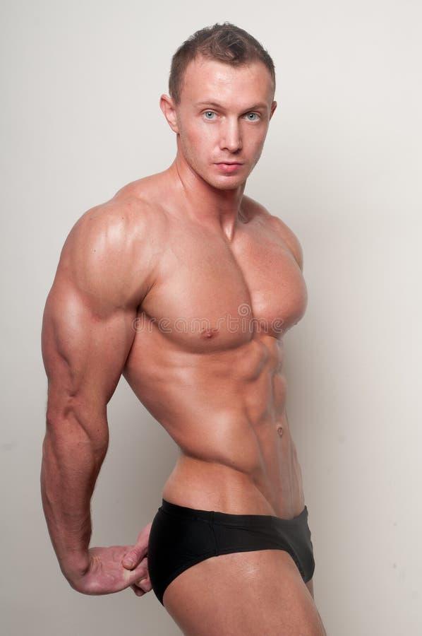 Modello muscolare immagini stock
