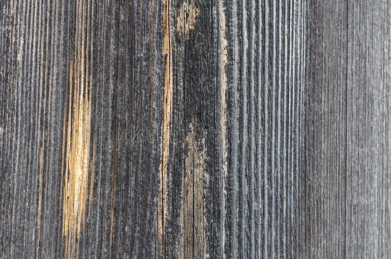 Modello naturale su struttura di legno naturale del bordo fotografie stock libere da diritti