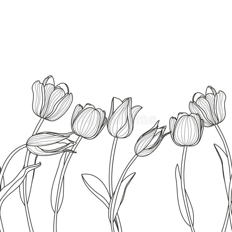 Modello orizzontale senza cuciture floreale di vettore Rebecca 36 illustrazione vettoriale
