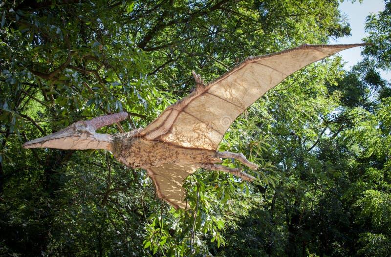 Modello realistico del dinosauro - Pteranodon fotografie stock
