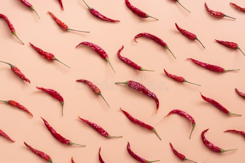 Modello rosso secco dei peperoncini posto piano su un fondo rosa di colore della pesca Vista superiore, disposizione piana fotografia stock